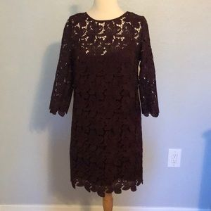 Loft Lace Mini Dress